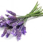 does lavender help you sleep
