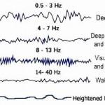 brainwaves chart