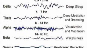 Understanding Delta Brain Waves & Sleep