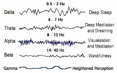 Understanding Delta Brain Waves And Sleep